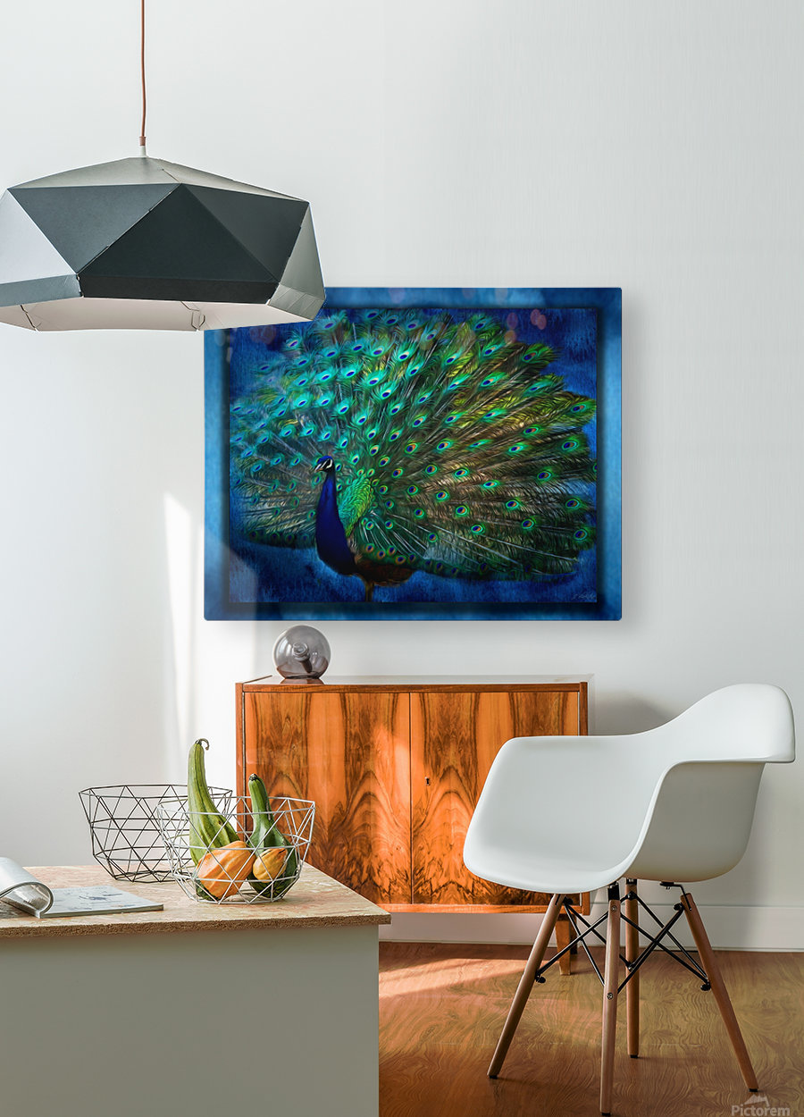 Being Yourself - Peacock Art by Jordan Blackstone  HD Metal print with Floating Frame on Back