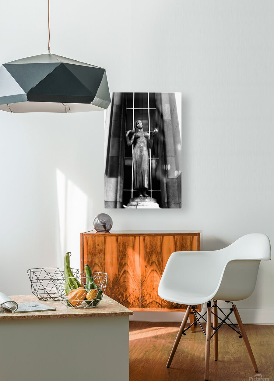 Parisian mask  Impression métal HD avec cadre flottant sur le dos