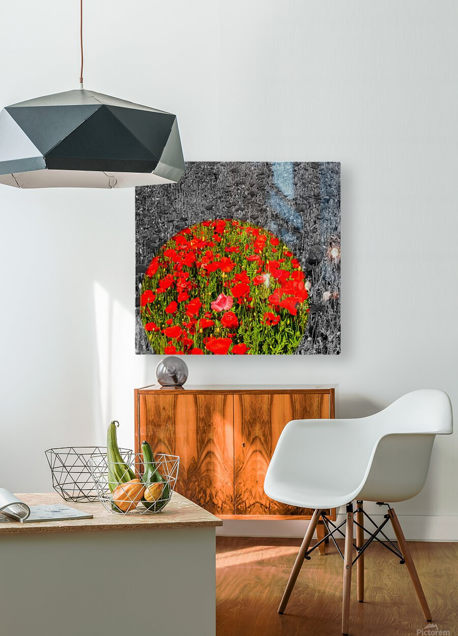Poppy Popper Popping  HD Metal print with Floating Frame on Back