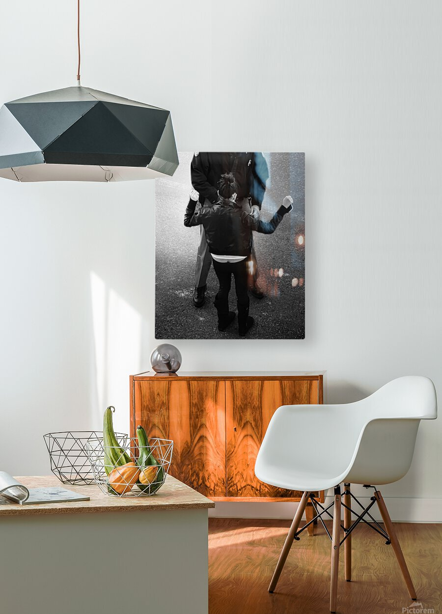 Detain and Search 2  HD Metal print with Floating Frame on Back