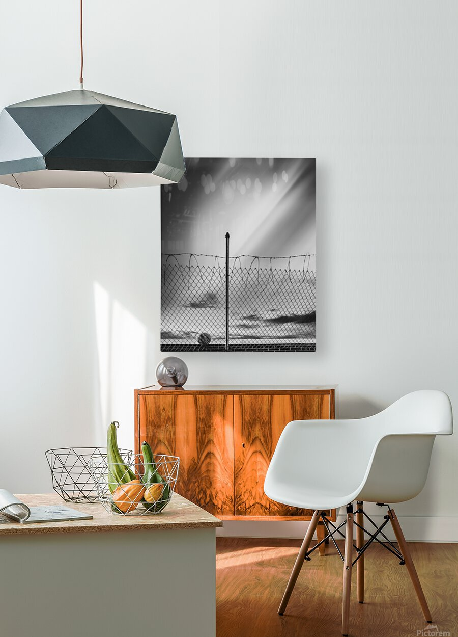 Soccer ball  HD Metal print with Floating Frame on Back