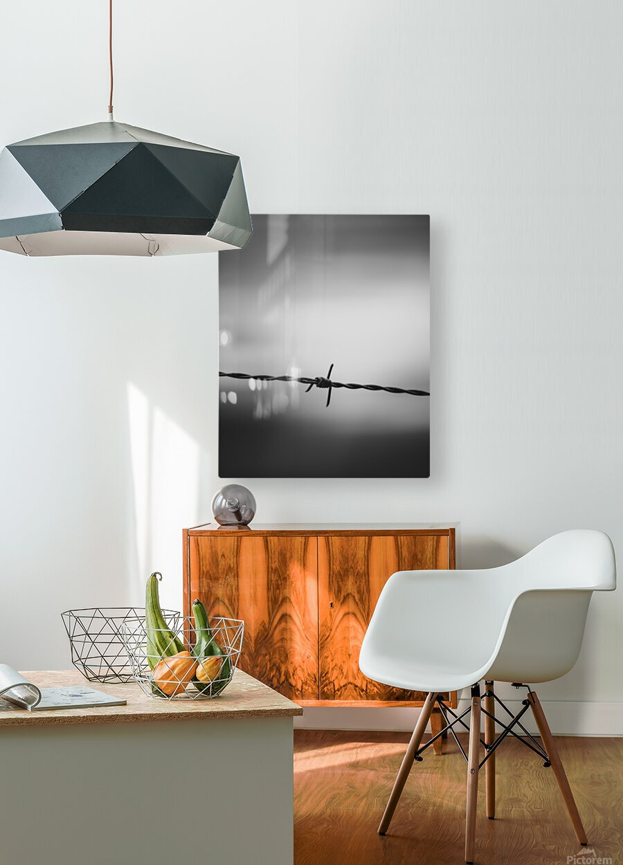 Twisted  HD Metal print with Floating Frame on Back