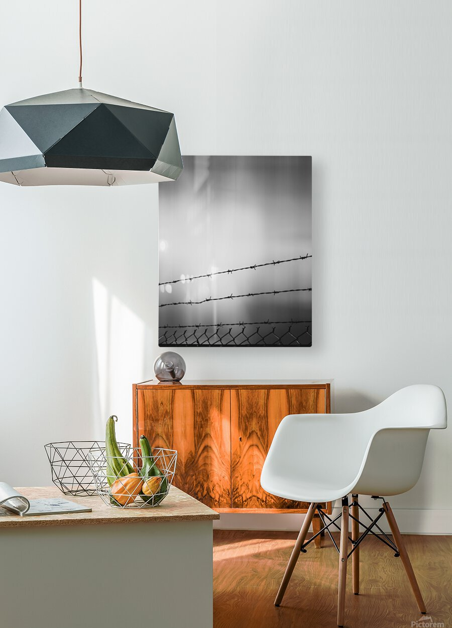 Three  HD Metal print with Floating Frame on Back