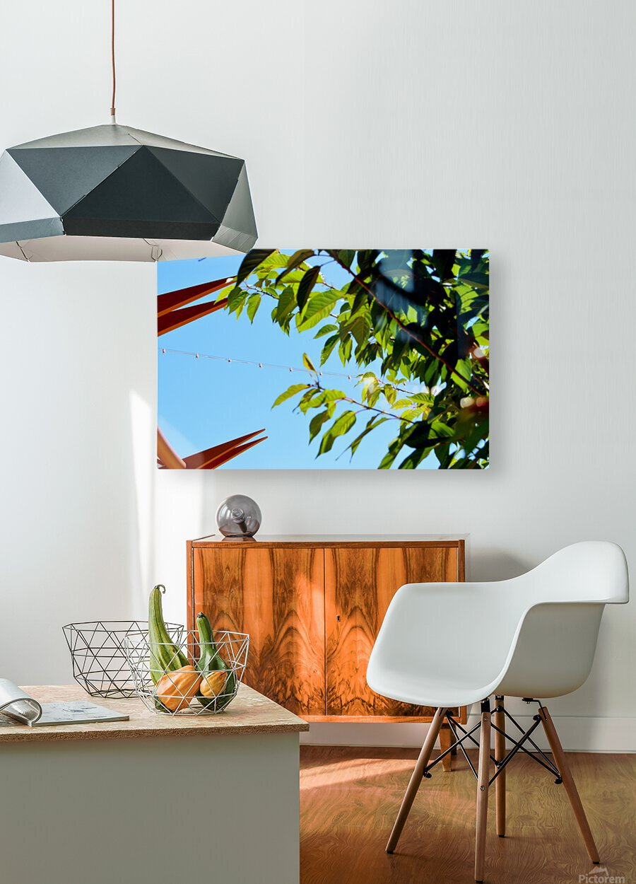 Light Up  HD Metal print with Floating Frame on Back