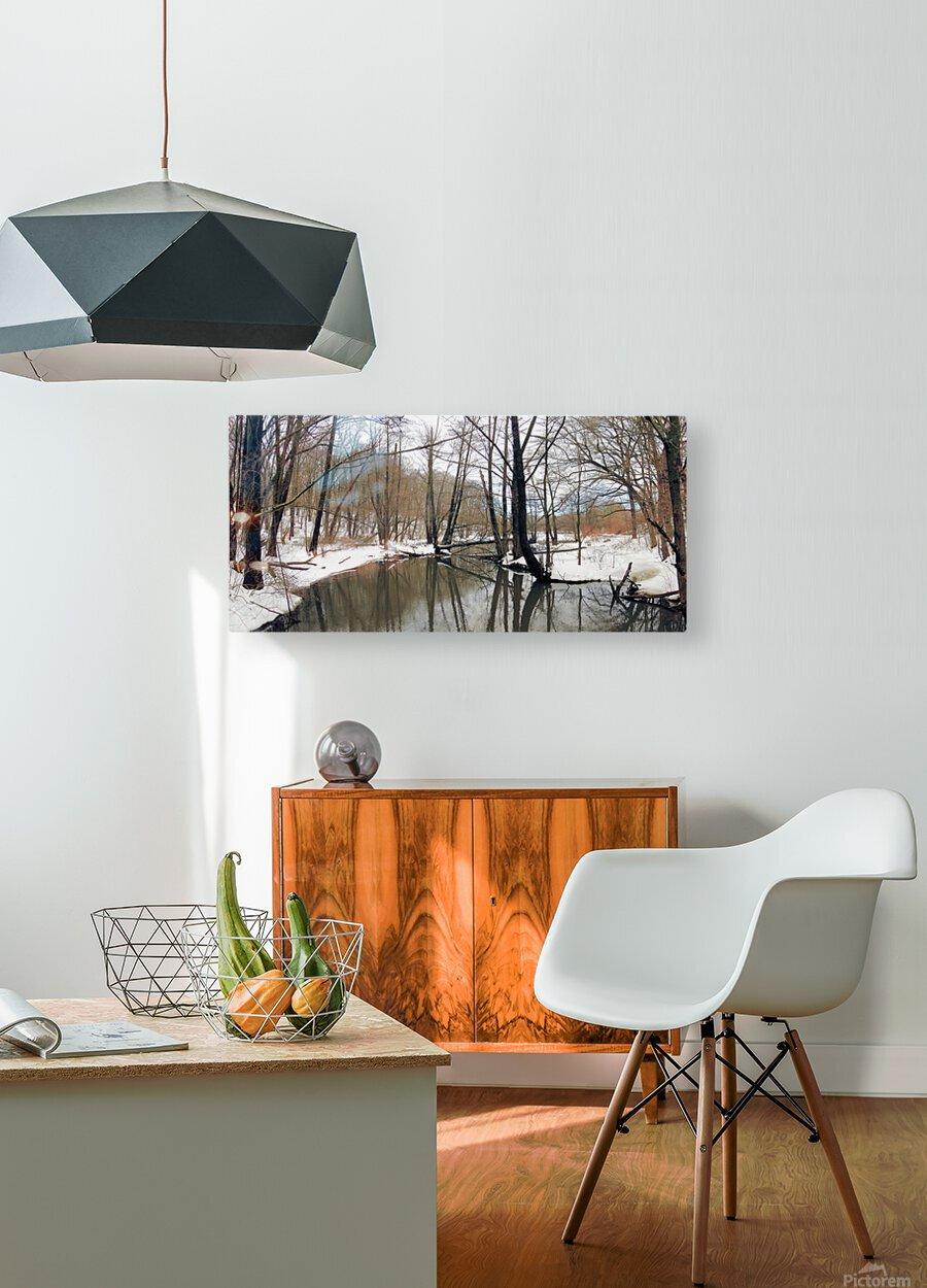 Lake Panorama  HD Metal print with Floating Frame on Back