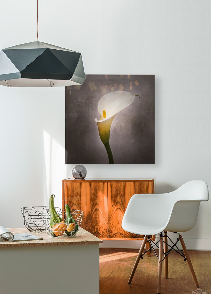 Graceful flower - Calla No. 4 | vintage style   HD Metal print with Floating Frame on Back