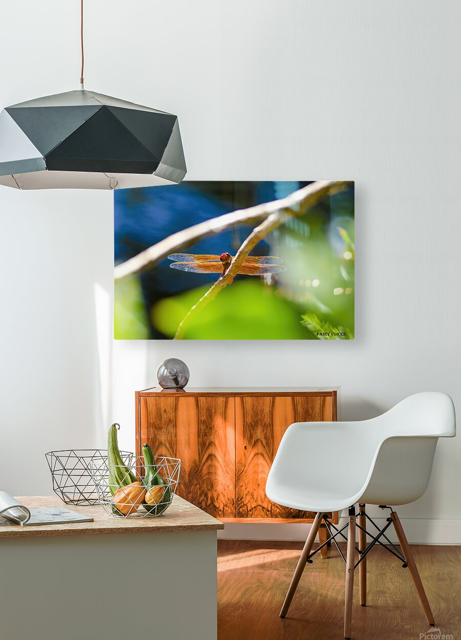 HELLO WORLD    HD Metal print with Floating Frame on Back