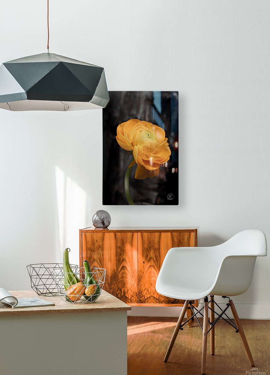 Unforgettable   HD Metal print with Floating Frame on Back