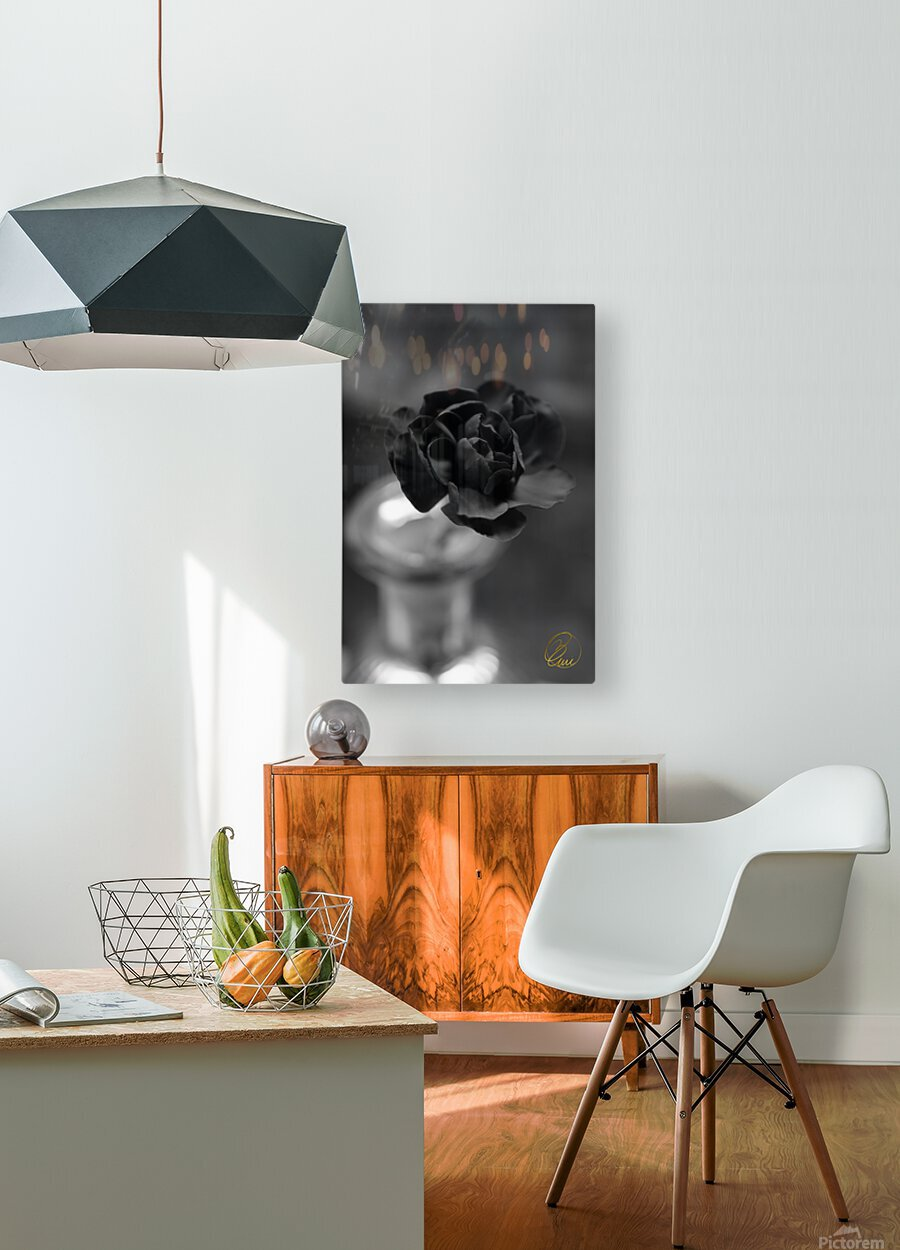 In an Instant   HD Metal print with Floating Frame on Back