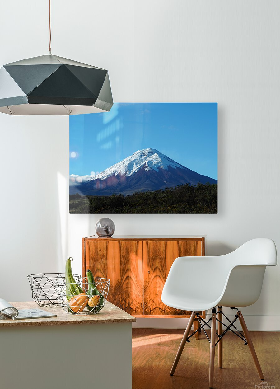 4AC2DAA8 F088 42F8 984A F2C96F02A281  HD Metal print with Floating Frame on Back