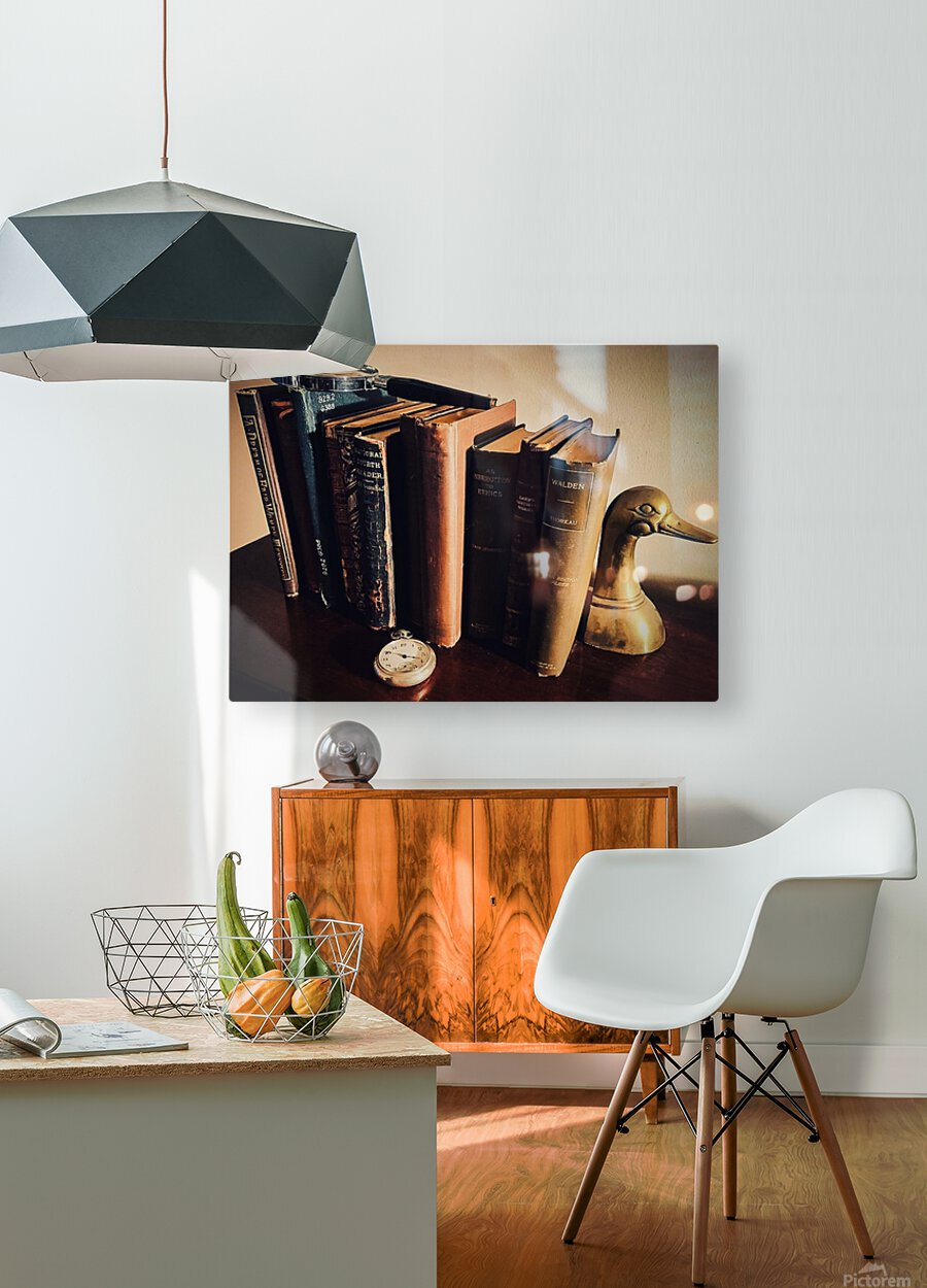 Studious  HD Metal print with Floating Frame on Back