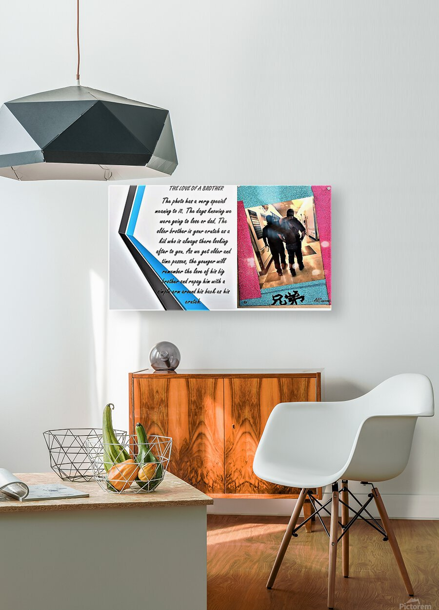 21.THE LOVE OF A BROTHER  3   HD Metal print with Floating Frame on Back