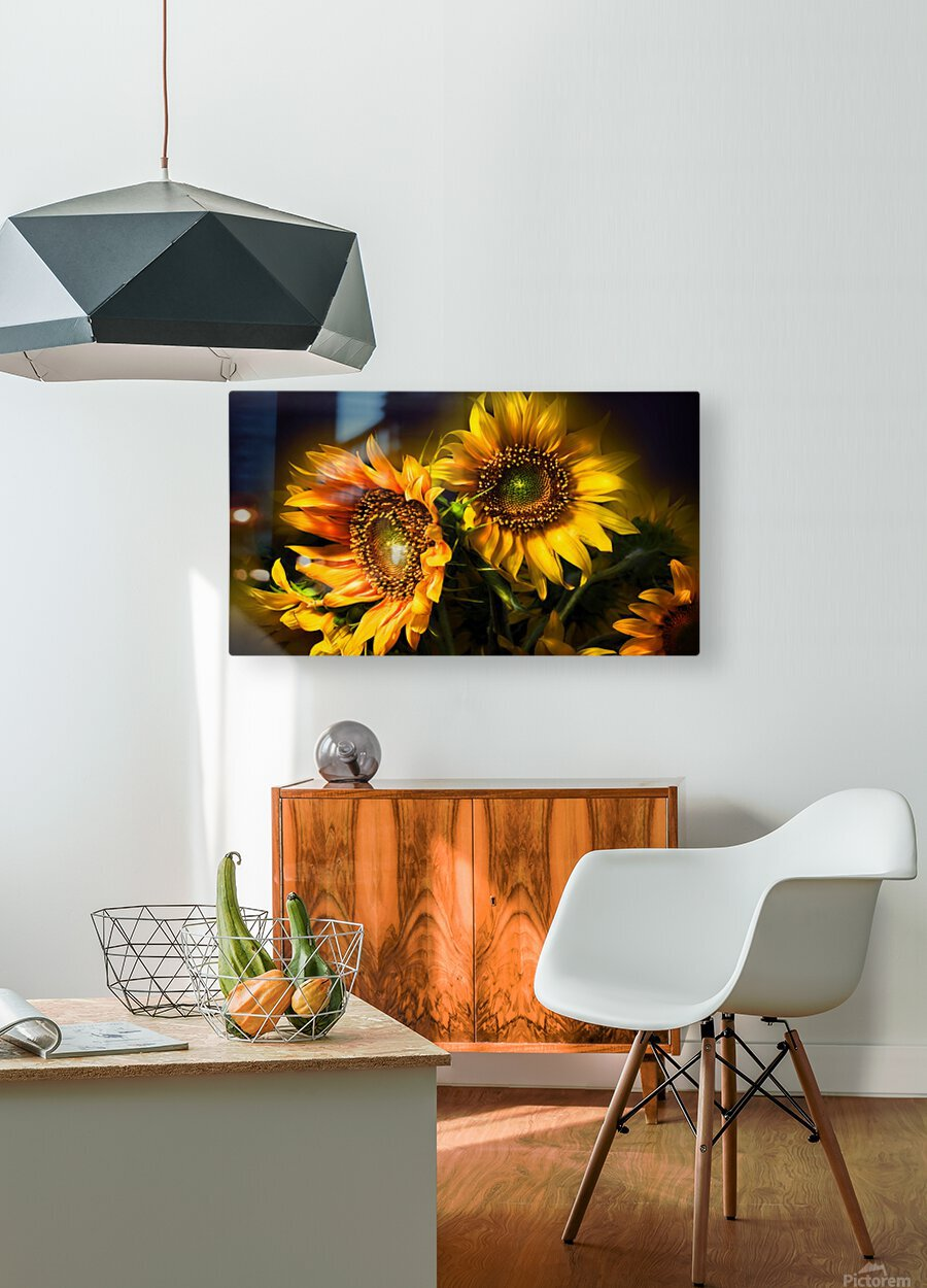 Little Suns  HD Metal print with Floating Frame on Back