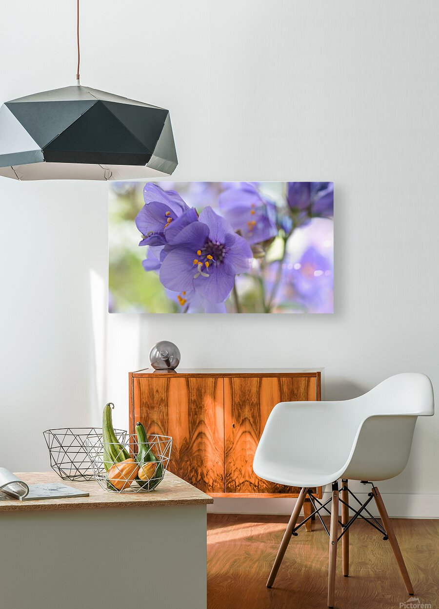 Blue Floral Photograph  HD Metal print with Floating Frame on Back