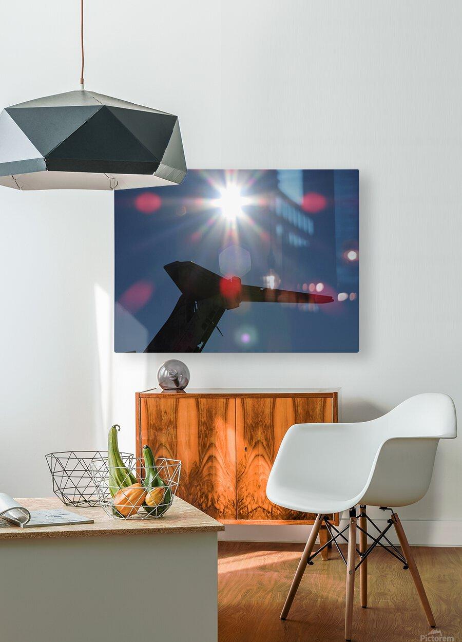 DSCN2528  HD Metal print with Floating Frame on Back