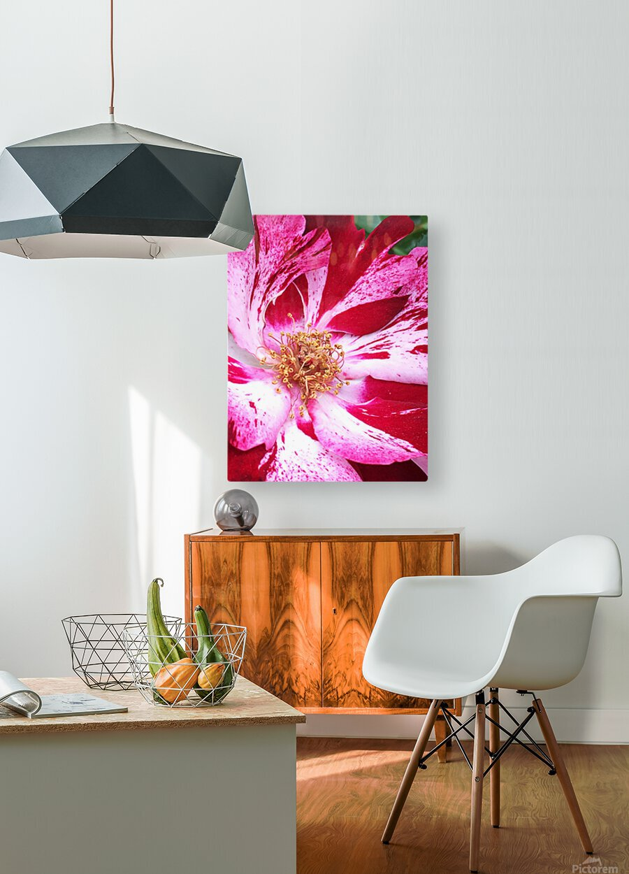 Red Wave  HD Metal print with Floating Frame on Back