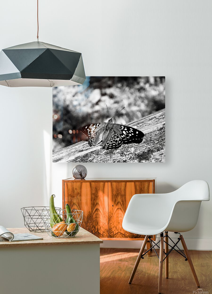 Delicate   HD Metal print with Floating Frame on Back
