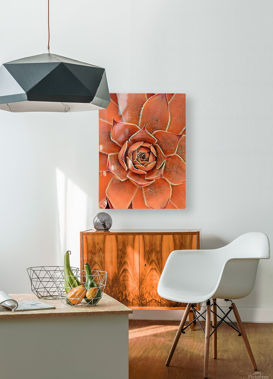 Spiral  HD Metal print with Floating Frame on Back