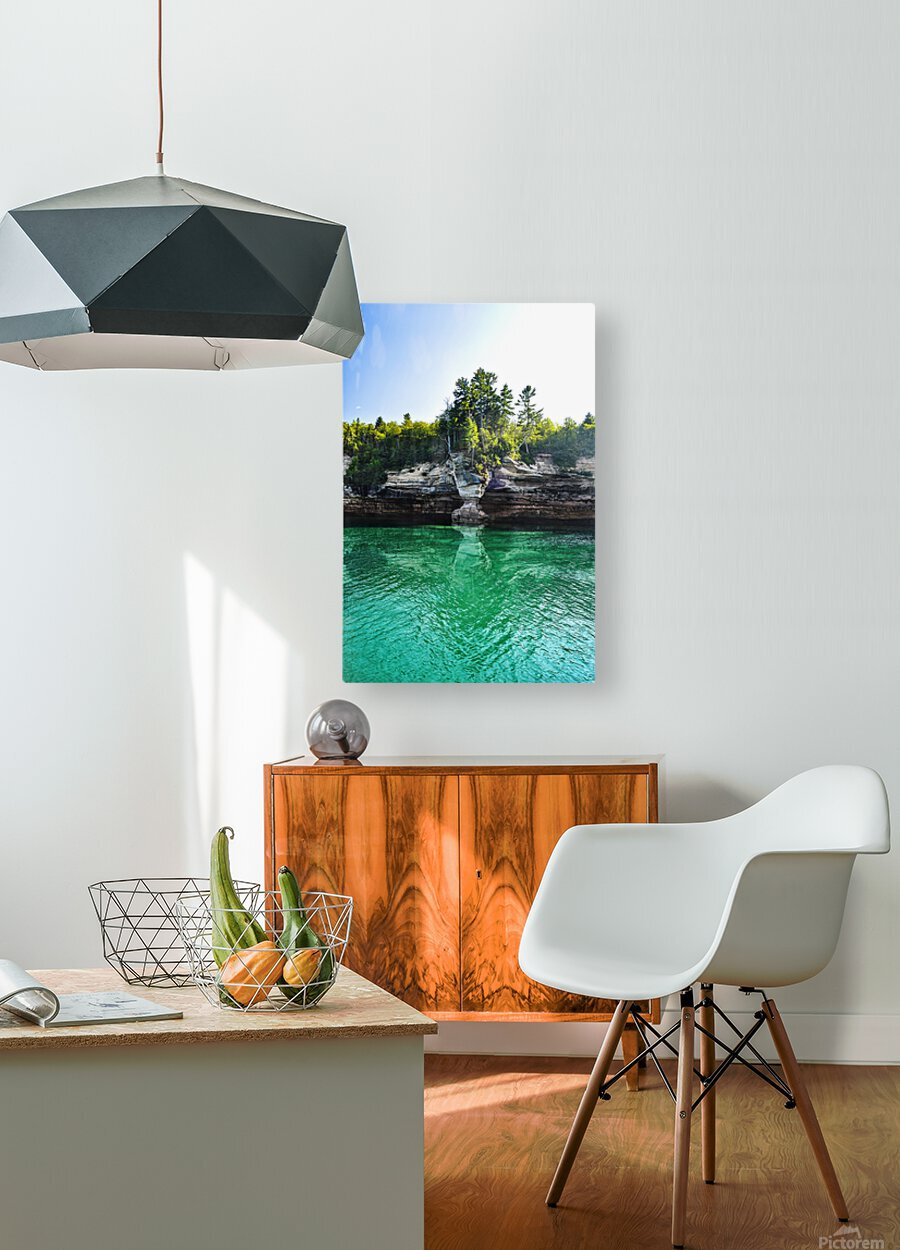 The Vase  HD Metal print with Floating Frame on Back