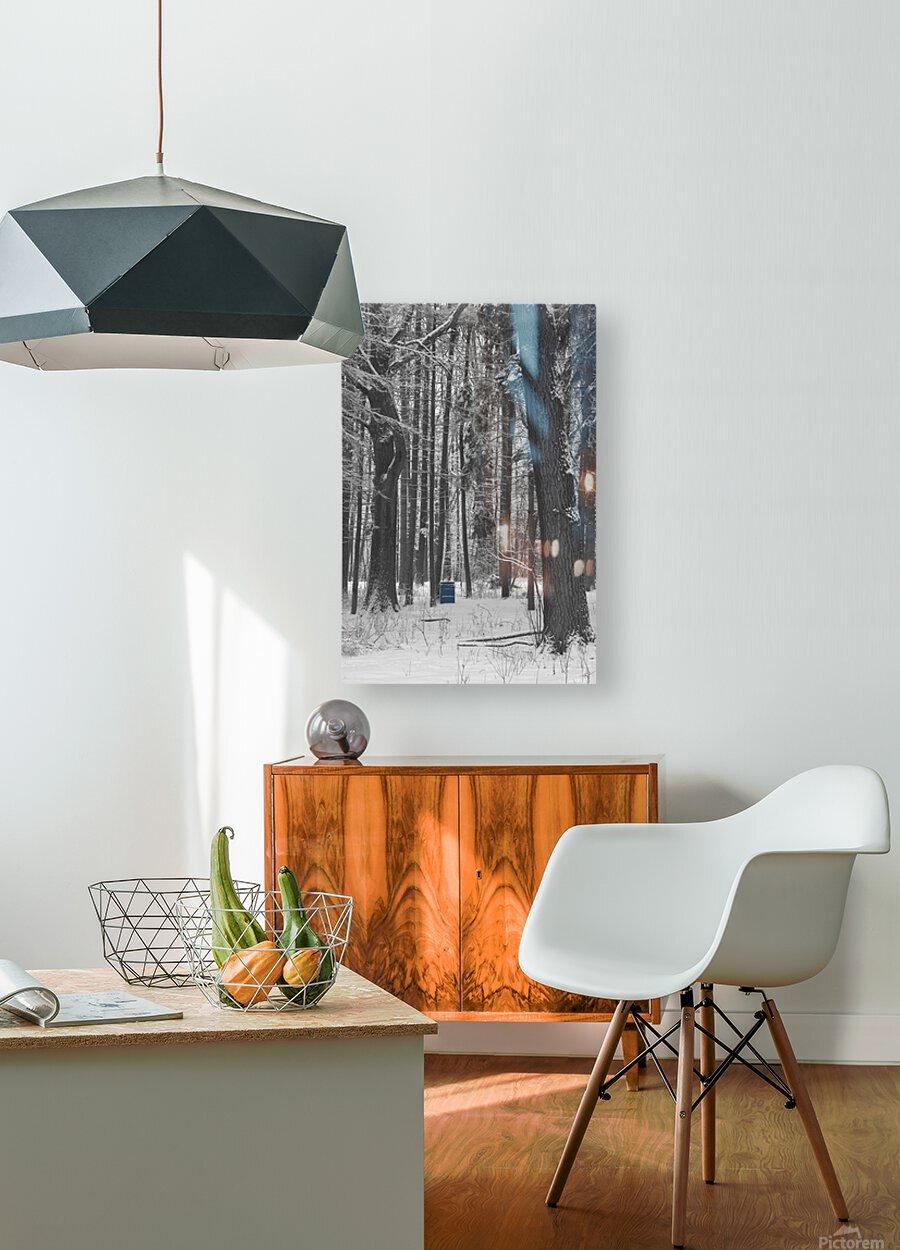 Blue Barrel in Woods  HD Metal print with Floating Frame on Back