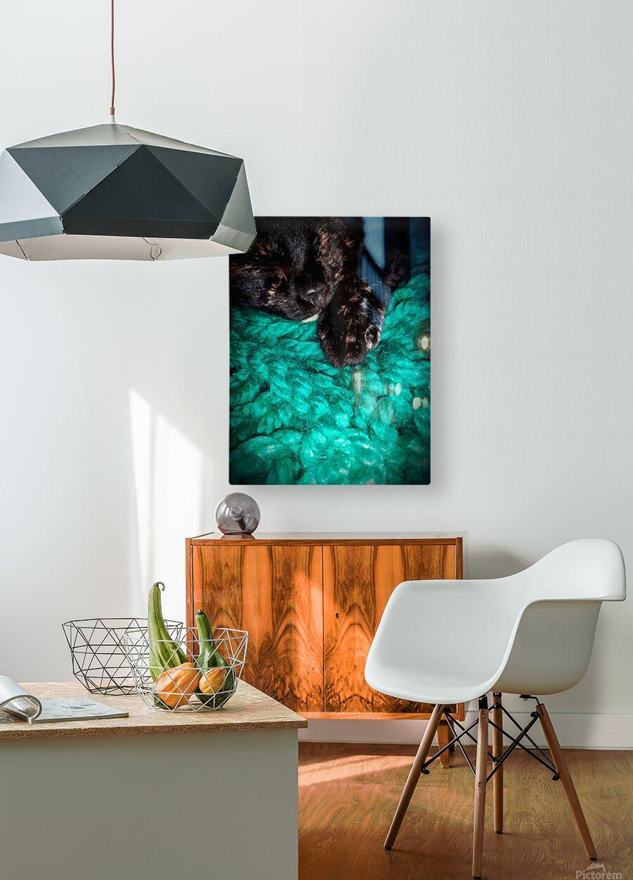 80CF134A 30F5 435E AE47 E42B13691760  HD Metal print with Floating Frame on Back