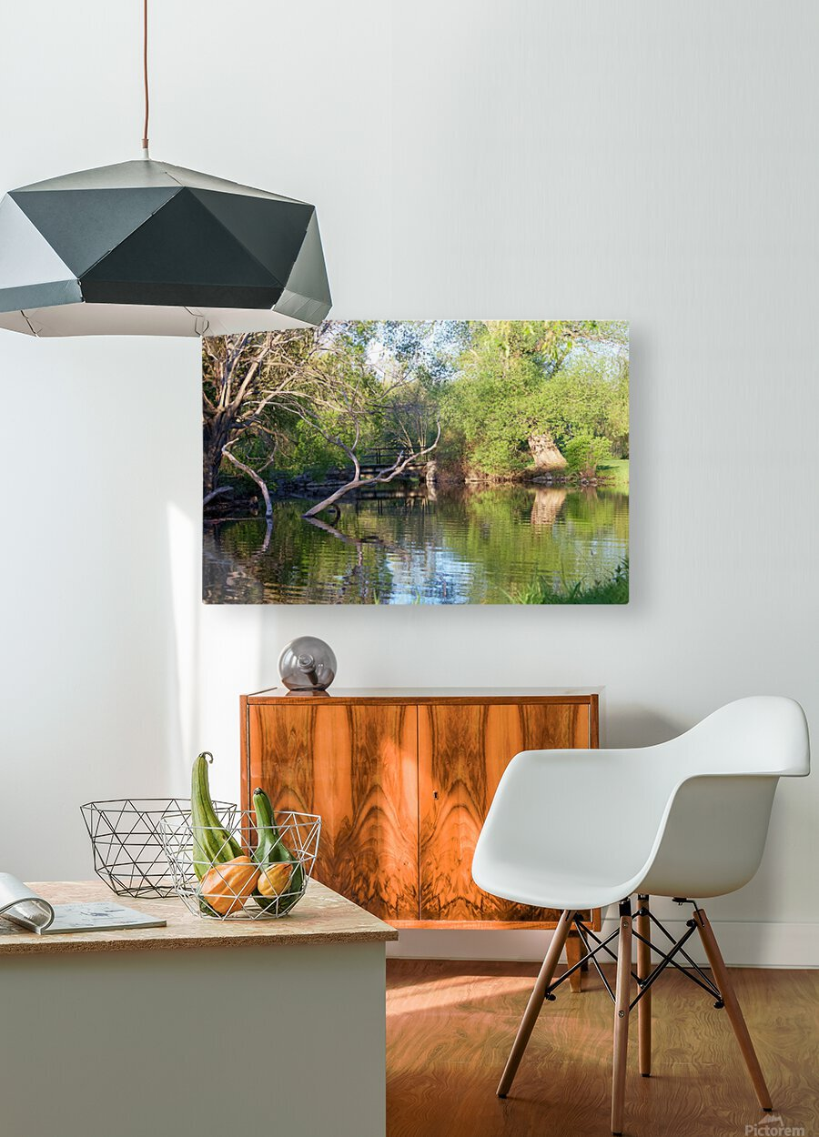 Relaxing Pond View  HD Metal print with Floating Frame on Back