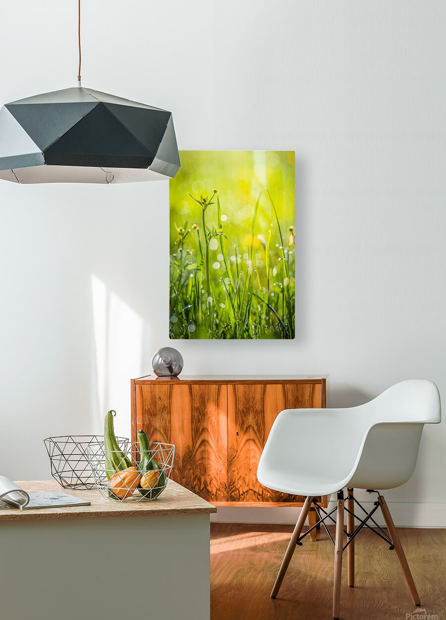 Summer meadow  HD Metal print with Floating Frame on Back