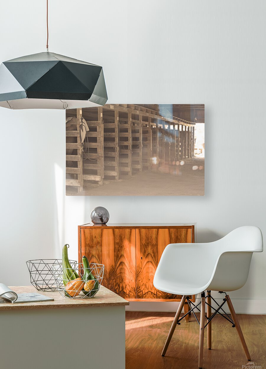 0060  HD Metal print with Floating Frame on Back