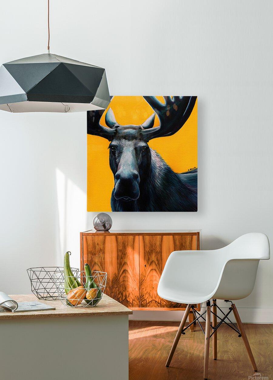 Moose  HD Metal print with Floating Frame on Back