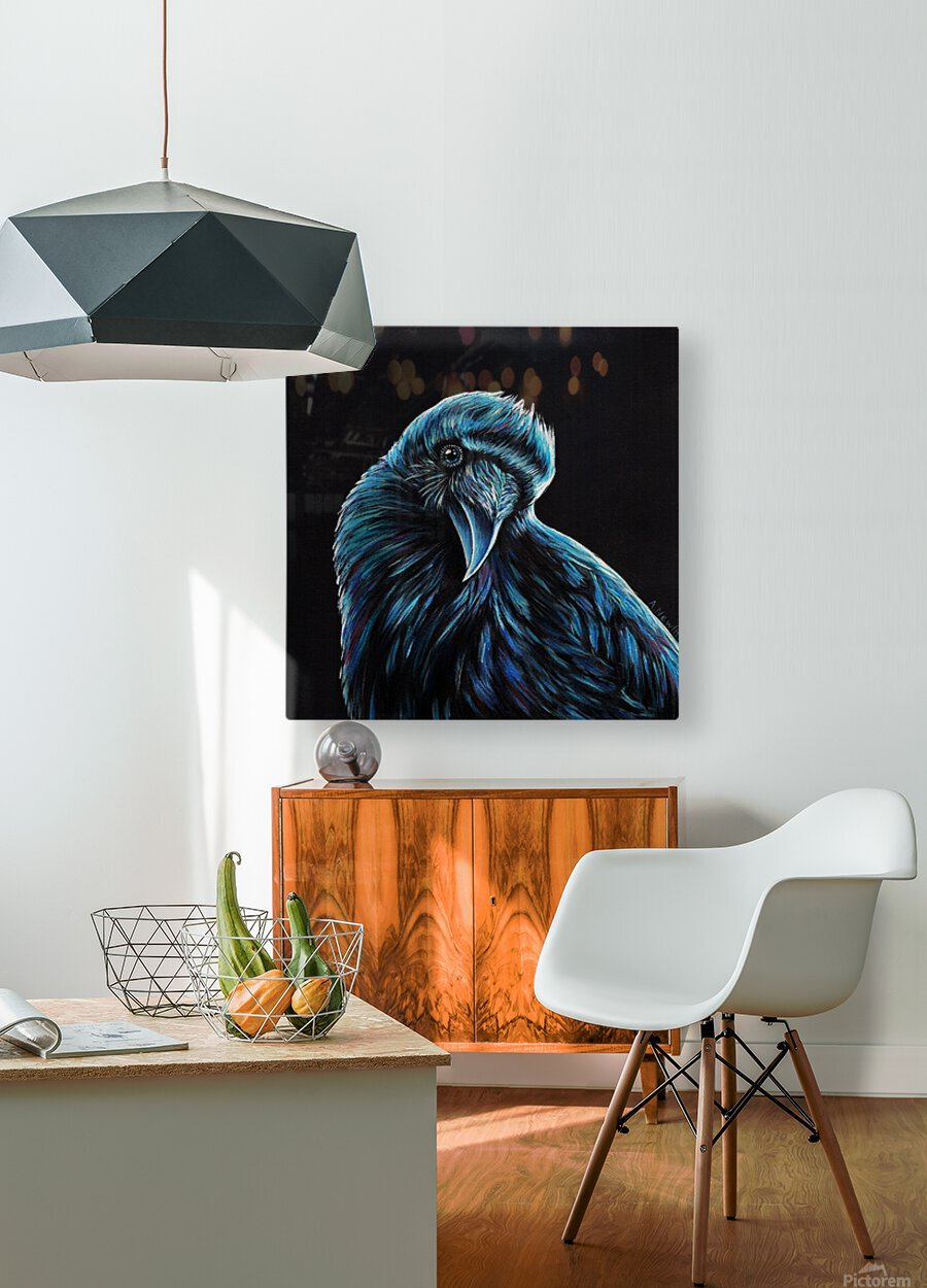 Curious Raven  HD Metal print with Floating Frame on Back