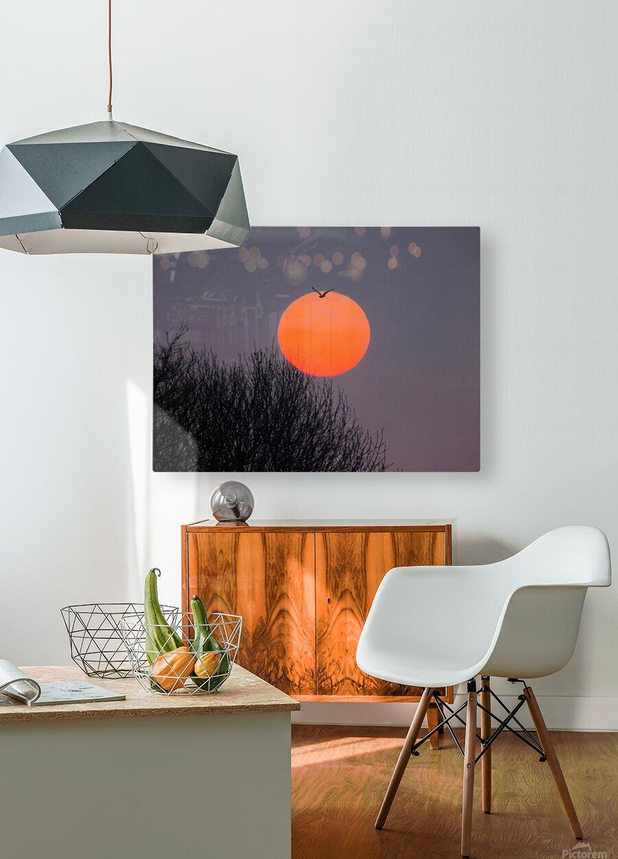 Sunrise lever de soleil  HD Metal print with Floating Frame on Back