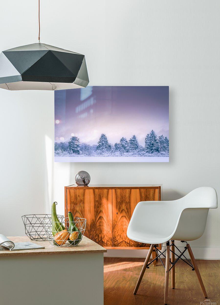 Winter landscape  HD Metal print with Floating Frame on Back