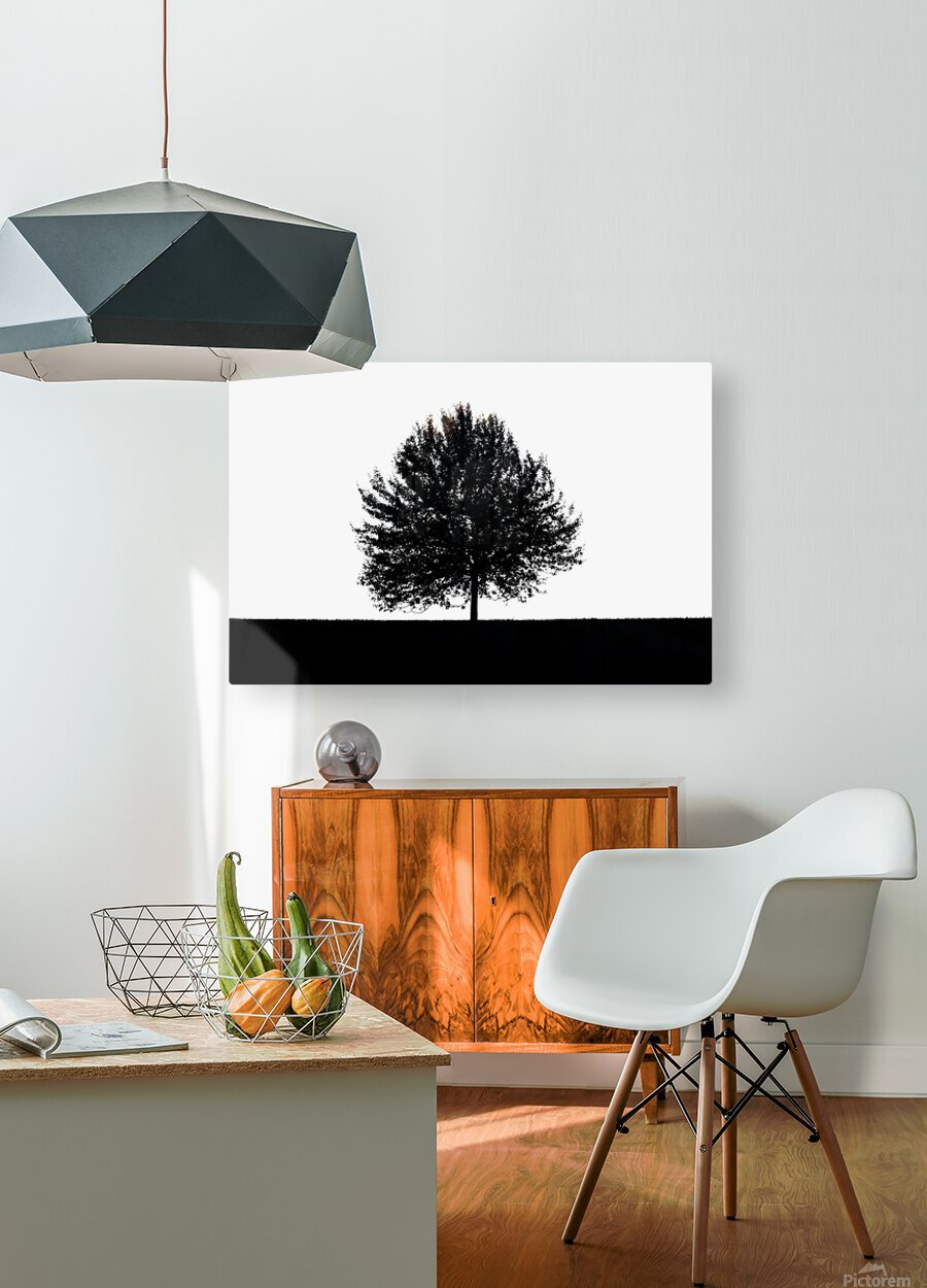 Silhouette of a lonely tree  HD Metal print with Floating Frame on Back