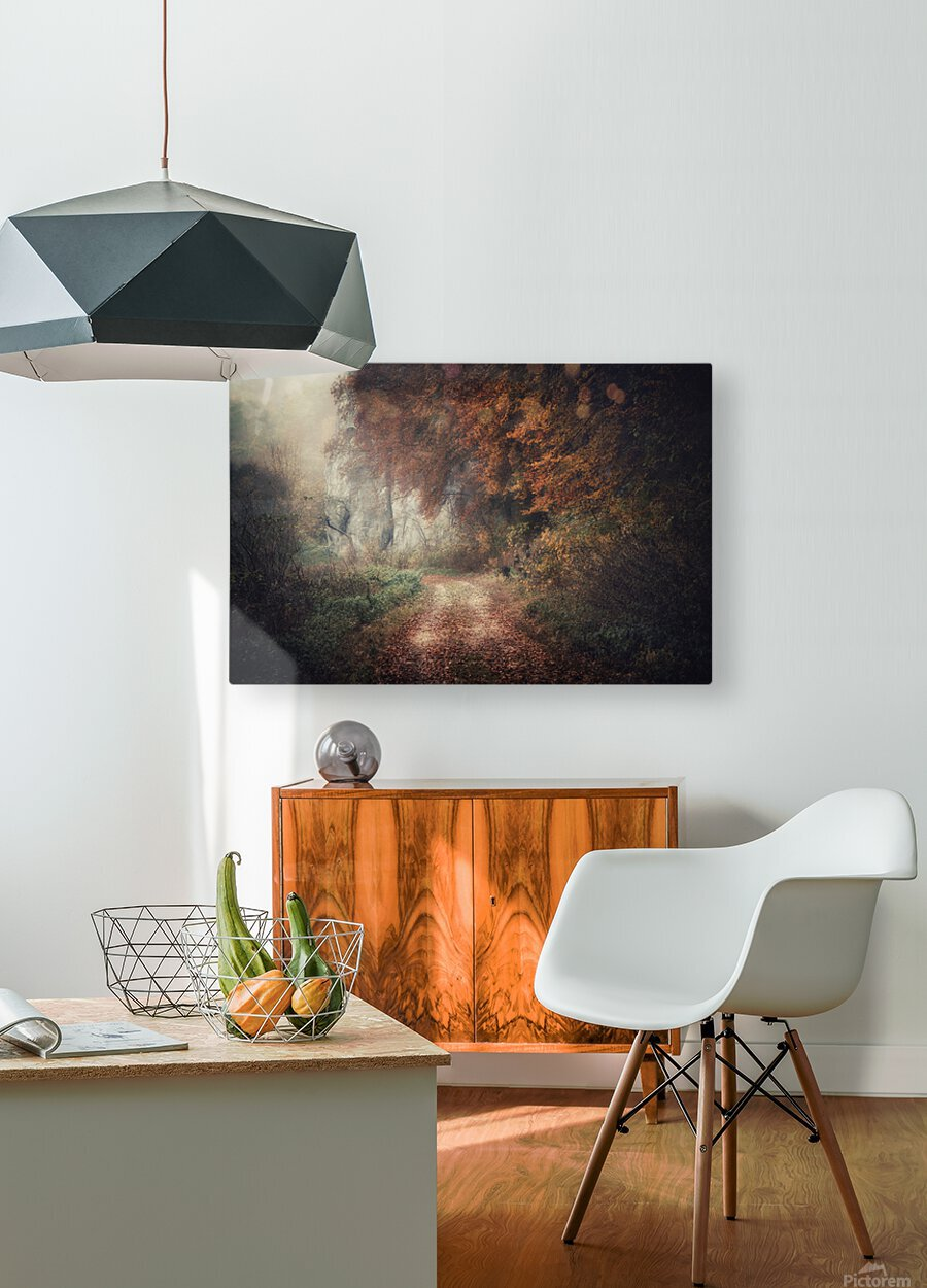 Foggy autumn forest  HD Metal print with Floating Frame on Back