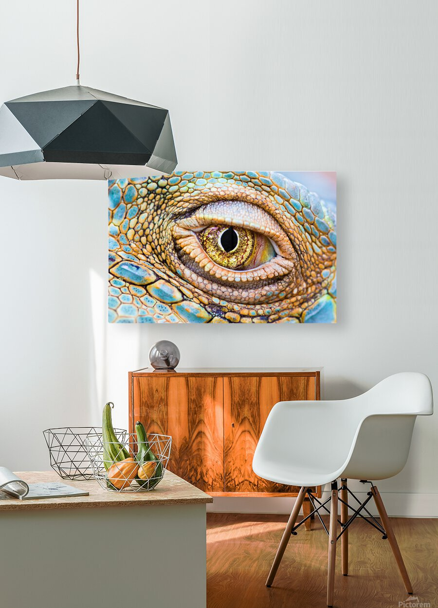 Eye of the dragon  HD Metal print with Floating Frame on Back