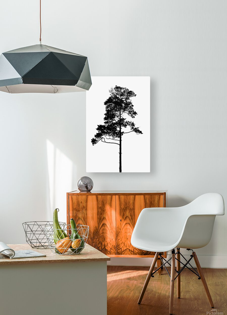 Tree silhouette  HD Metal print with Floating Frame on Back
