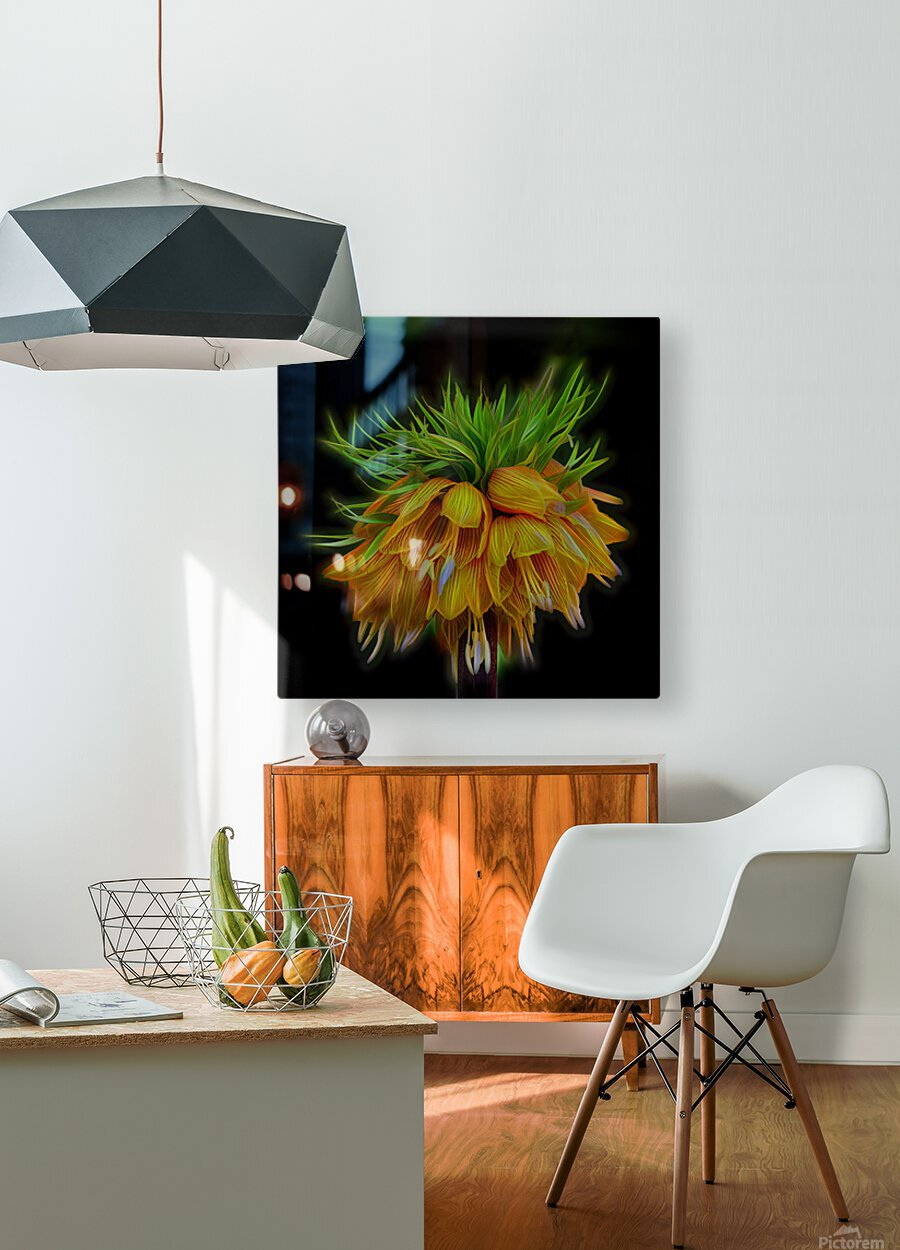 Crown Imperial  HD Metal print with Floating Frame on Back