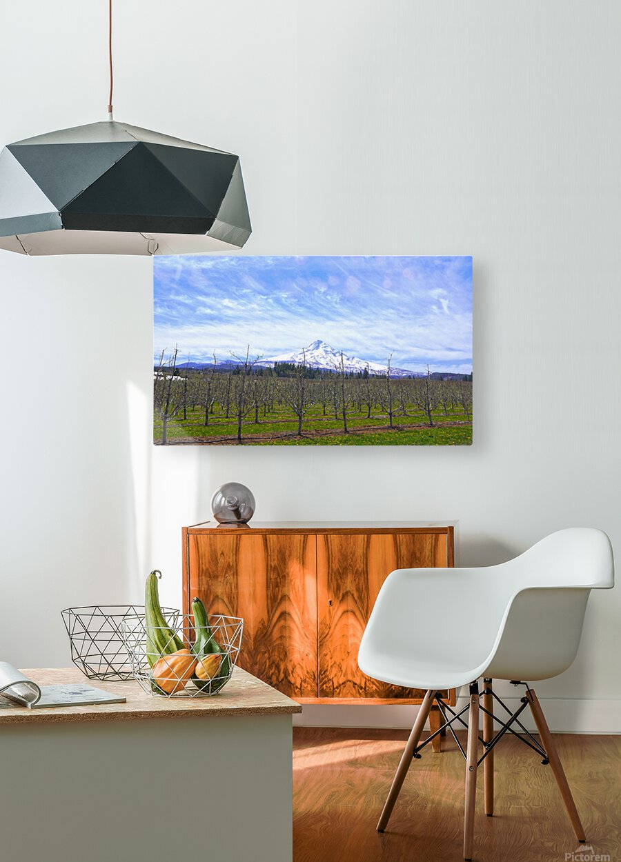 Spring at the Orchards  - Mount Hood - Oregon  HD Metal print with Floating Frame on Back