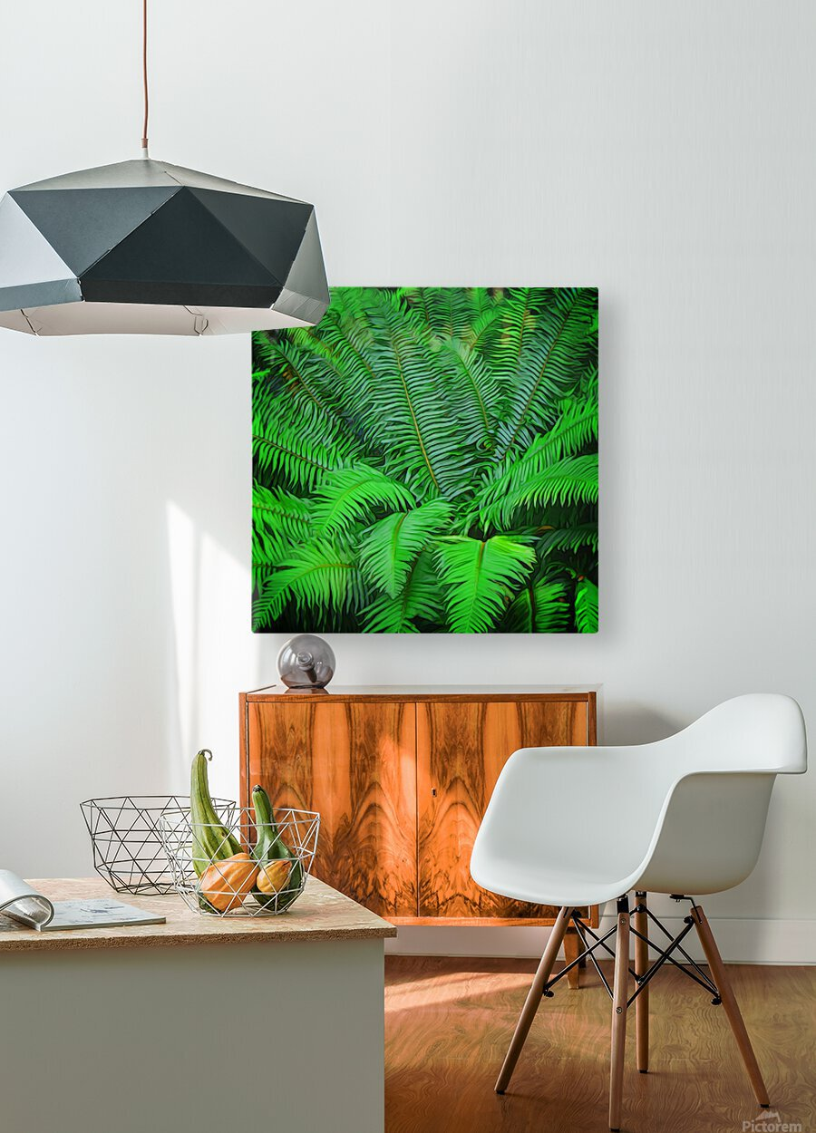 Just Ferns  HD Metal print with Floating Frame on Back
