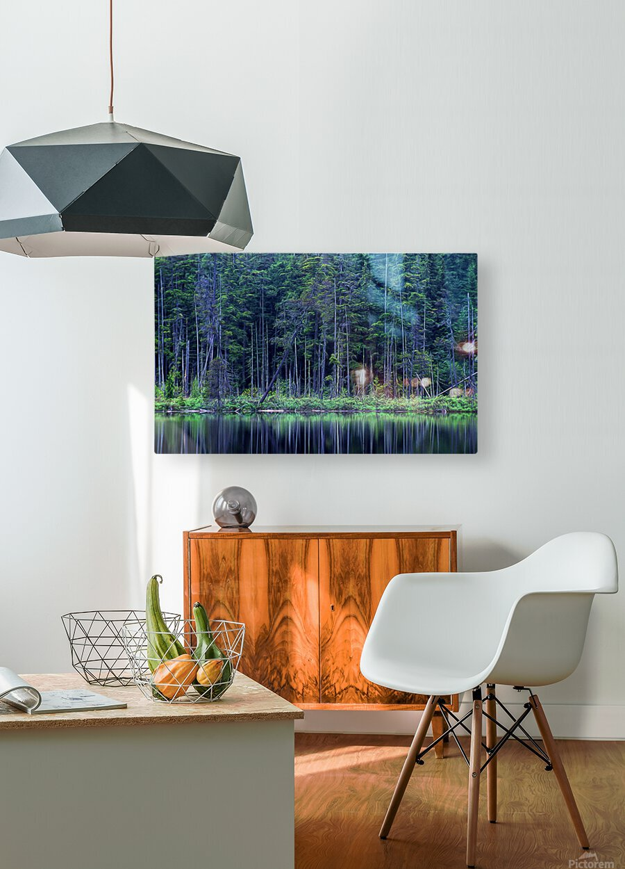 Forest by the Lake  HD Metal print with Floating Frame on Back