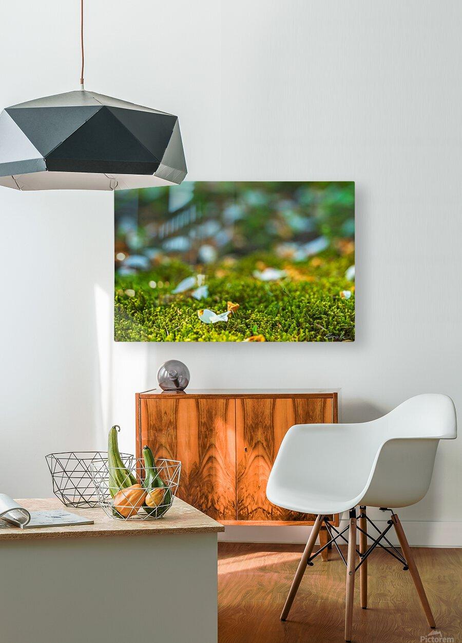Petit poisson au jardin  HD Metal print with Floating Frame on Back
