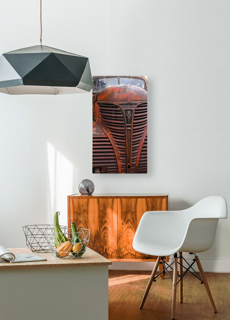 Belle vieille carcasse - Beautiful Old Carcass  HD Metal print with Floating Frame on Back