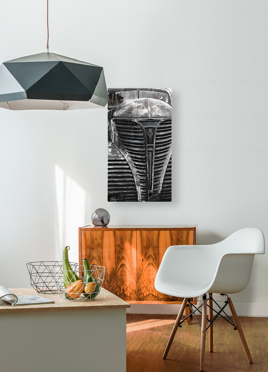 Belle vieille carcasse - Beautiful Old Carcass N&B  HD Metal print with Floating Frame on Back