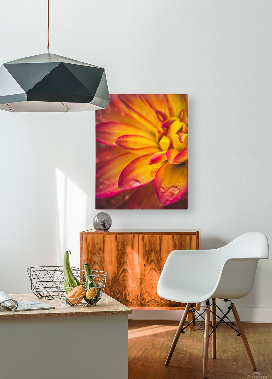 Rain On The Flowers  HD Metal print with Floating Frame on Back