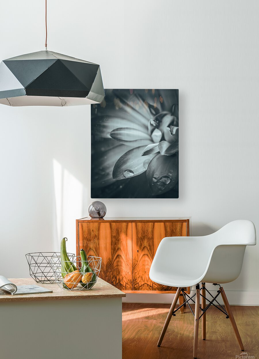 Flowerful Study In A Monochromatic Vibe  HD Metal print with Floating Frame on Back