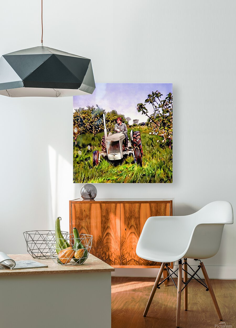 One Man And His Fergie Tractor  HD Metal print with Floating Frame on Back