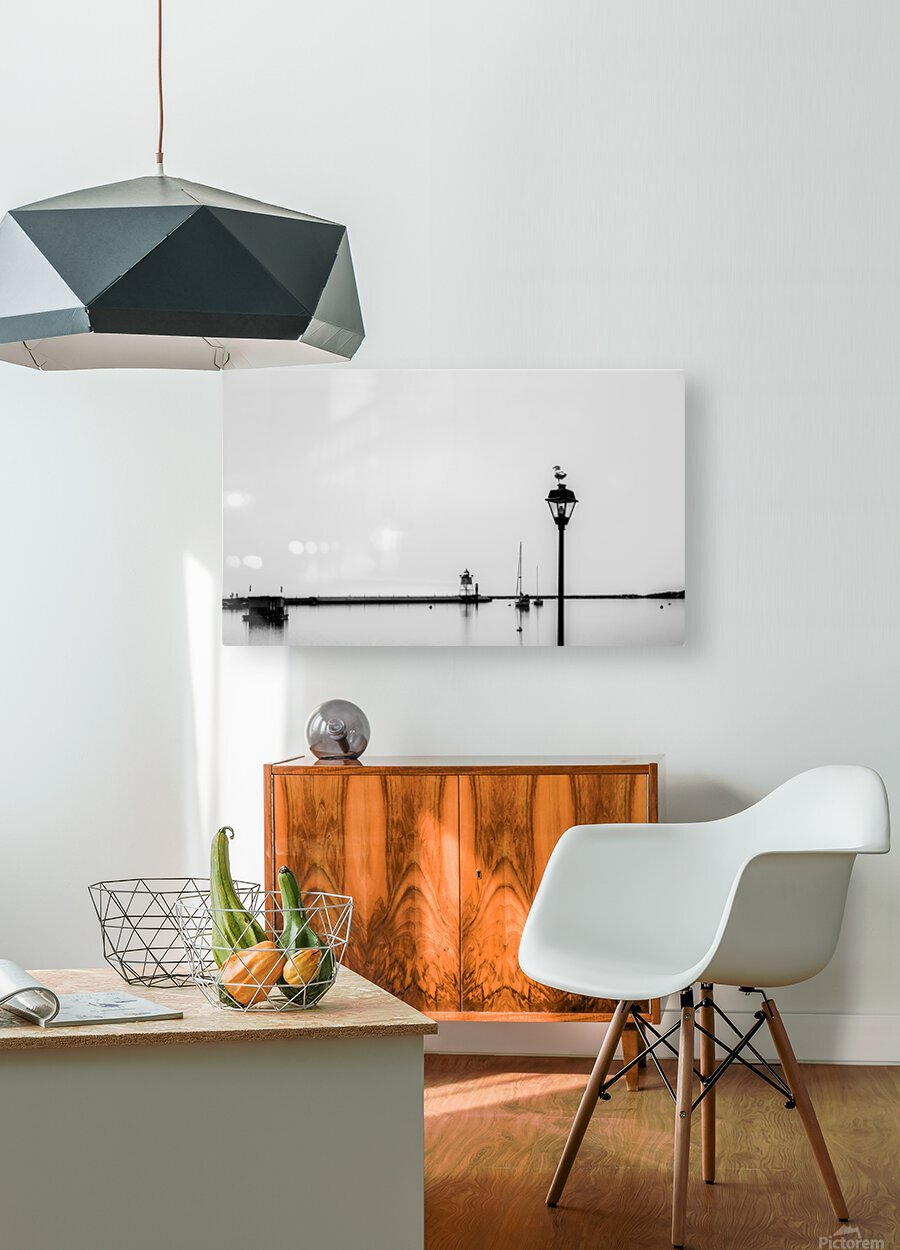 A Gray Day  HD Metal print with Floating Frame on Back