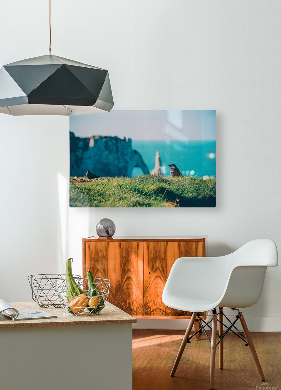 Photobook 8167  HD Metal print with Floating Frame on Back