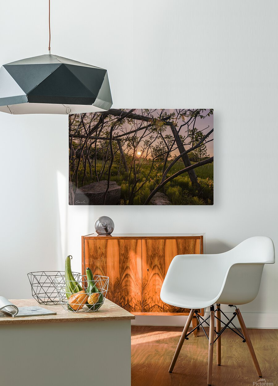 Un lieu pour mediter - A place to meditate  HD Metal print with Floating Frame on Back