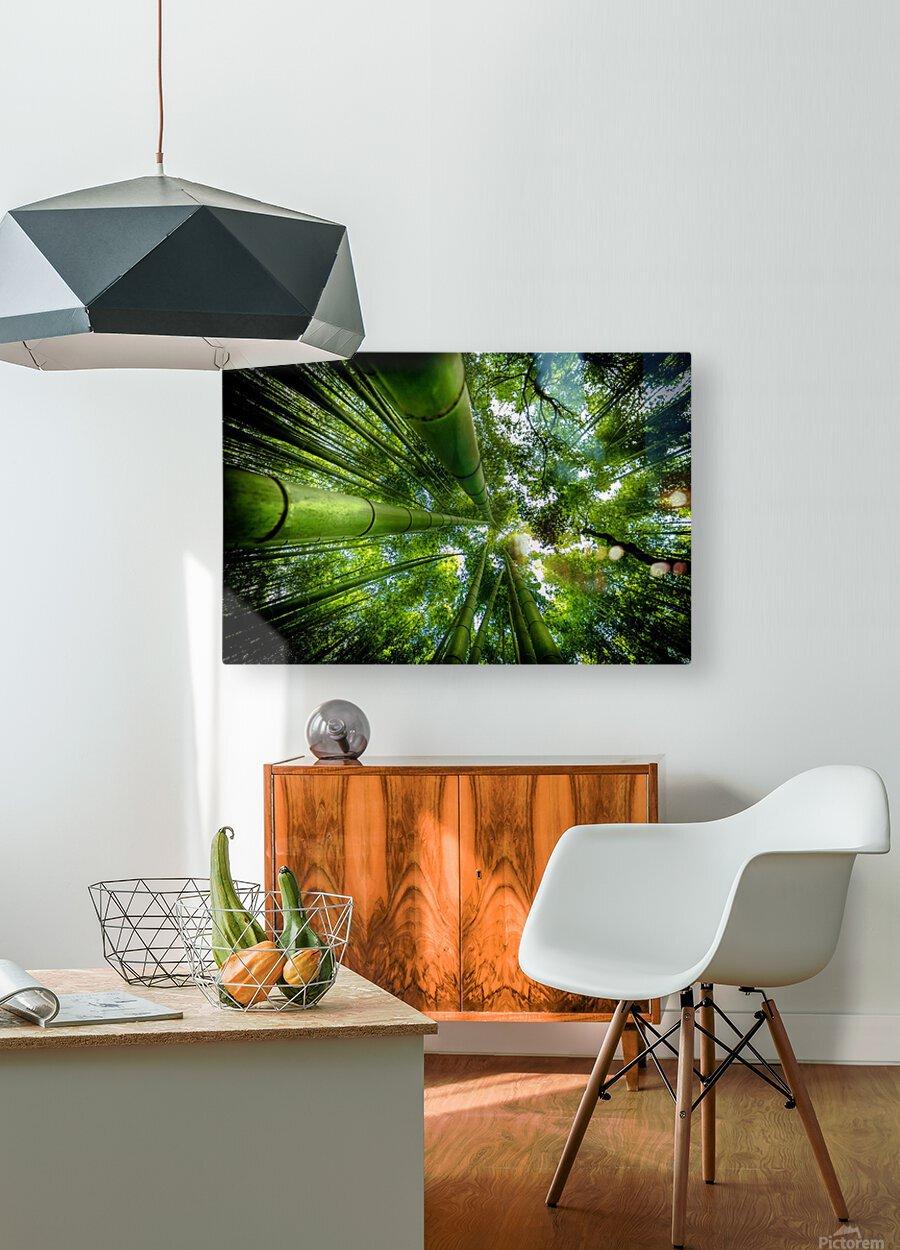 ARASHIYAMA  HD Metal print with Floating Frame on Back
